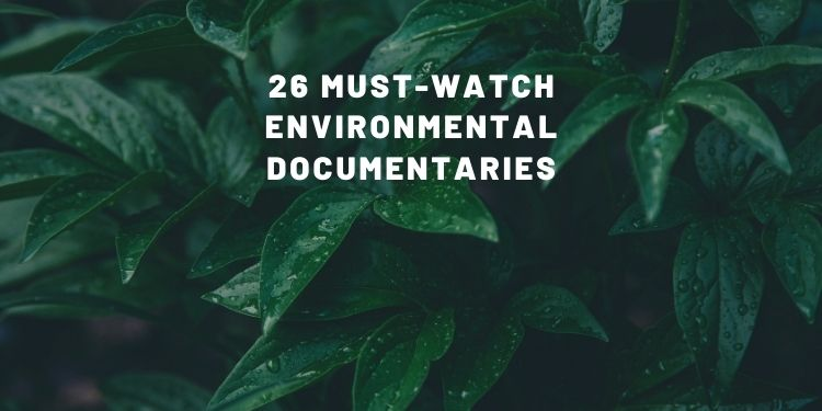 environmental documentaries on Netflix,environmental documentaries